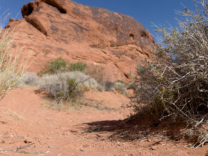 The Bucket List - From the Desert to the Cool Valley